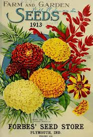 John Scheepers Kitchen Garden Seeds 17 Best Images About All Things Gardening Seed Packet On Pinterest