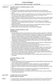 Auditor Internal Audit Resume Samples Velvet Jobs Iso S Sevte
