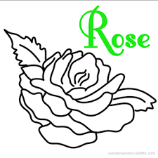 Small Picture Coloring Page Rose Beautiful Fairy Reading A Book In A Rose Free