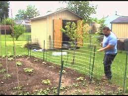 diy welded wire fence. Garden Trellis Welded Wire Fence Installation Diy E