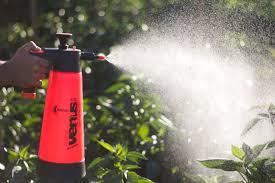 kwazar hand pump sprayer gardener grows vegetable seeds