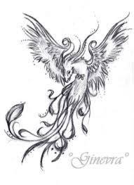 Drawings Of Phoenix Drawings Of Phoenix Rome Fontanacountryinn Com