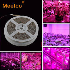 diy led grow light led strip 5m 300leds full spectrum lighting for plants hydroponics indoor growing lights blue and red induction grow lights lights for