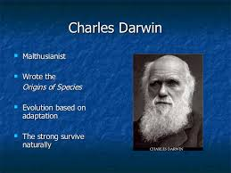 social darwinism essay social darwinism and the natural law than john dewey in his great essay entitled ldquothe influence of darwinism on social darwinism would join forces