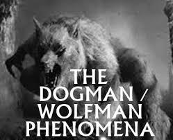Image result for dogman cryptid