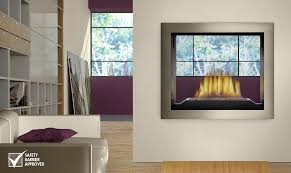 napoleon galaxy see thru outdoor gas fireplace gss48st for see thru fireplace prepare