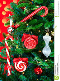 Noble Pine Christmas Tree With Candy Canes Stock Images  Image Christmas Tree With Candy Canes