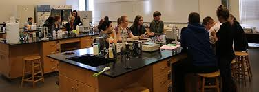ola high school ap biology s state biochemistry ola high school ap biology class s state university for a day of biochemistry