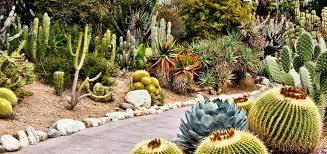 desert garden ideas. Unique Desert Desert Garden Landscaping Ideas Inside Garden Ideas S