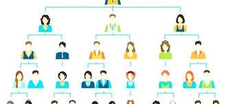 Kitchen Organization Chart Organizational Structure Of
