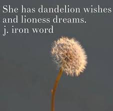 Quotes On Wishes And Dreams Best of Dandelion Quotes And Sayings