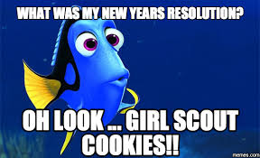 Image result for new year resolutions meme