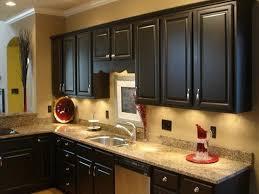 best kitchen cabinet paintBest Paint Colors For Kitchen Cabinets  ellajanegoeppingercom