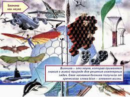Презентация на тему Бионика синтез биологии и техники  6 Бионика это наука