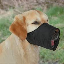 Trixie <b>Намордник</b> для собак <b>нейлоновый</b> №5 купить по выгодной ...