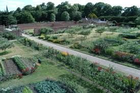 Walled Kitchen Gardens Clumber Park Historic And Botanic Garden Trainee Programmes