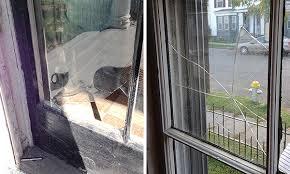 replacing broken window panes with