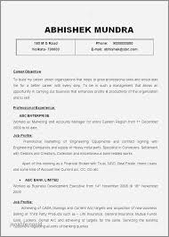 Sample Resume For Infrastructure Manager Elegant Resume Sample Child