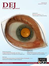 diabetic eye journal bars diabetic eye journal