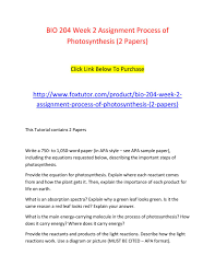 Bio 204 Week 2 Assignment Process Of Photosynthesis 2 Papers 2