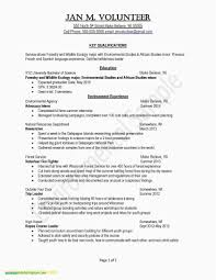 Resume Summary Examples Criminal Justice New Example Great Resumes ...
