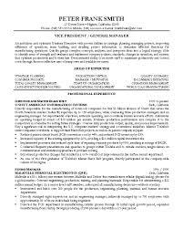 Resume Sample 7 Vice President Resume Career Resumes