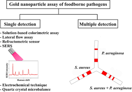 Electrical Tagging Colour Chart Wa Single And Multiple Detections Of Foodborne Pathogens By