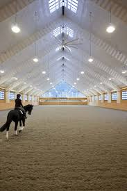 horse equestrian light wood white indoor riding arena show jumping hunter dressage