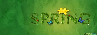 spring erfly facebook cover