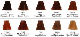 Keune Red Hair Color Chart Image Result For Keune Medium Mahogany In 2019 Golden