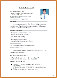 Resume Format 2017 Mesmerizing Latest Resume Format Doc Format Word Doc Latest Resume Format Doc