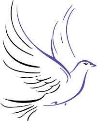 DOVE-LOGO | Project Dove