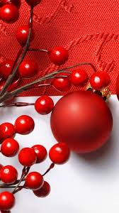 wallpaper hd for mobile samsung galaxy note 3. Modren Galaxy Ristmas Red Fruit Note 3 Wallpapers For Wallpaper Hd Mobile Samsung Galaxy L