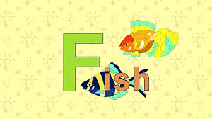 fish english zoo alphabet letter f video id s=640x640
