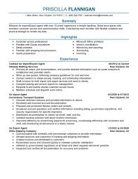 Best Air Import Export Agent Resume Example Livecareer Executive