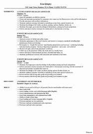 Retail Associate Resume Template Client Associate Resume Unique Resume Template For Retail Associate 14