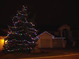 C9 Christmas Lights Up Or Down Santas Arm Christmas Light Installation Services