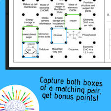 Biomolecules Review Dot Game Review Carbs Lipids Proteins And Nucleic Acids