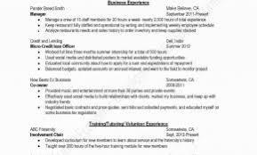 Executive Summary Resume Elegant Resume Summary Examples Research