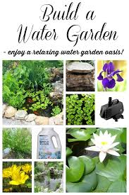 10 tips to build the perfect pond including diy tips design and plant ideas to