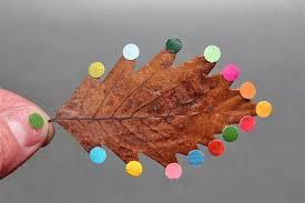 diy leaf art by sabine timm