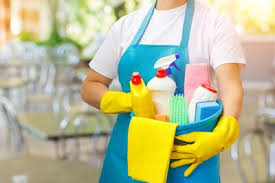 Cleaner House What Questions Should I Ask When Hiring A House Cleaner House
