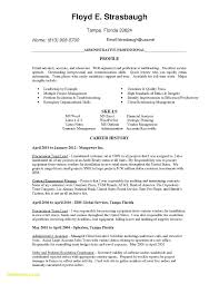 How To Write A Resume Summary Lovely 19 Unique Resume Career Summary