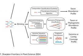 Taxonomic Classification Ngs Analysis