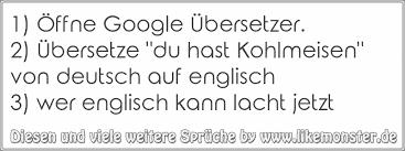 1 öffne Google übersetzer2 übersetze Du Hast Kohlmeisen Von