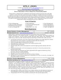 Director Product Management Resume Itacams 209a810e4501