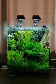 Nano Aquarium Design