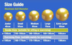 Physio2go Gym Ball 45cm Alphasport