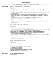 Resume Define Travel Marketing Manager Resume Samples Velvet Jobs