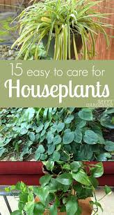 if you want to add some green to your home but you re a